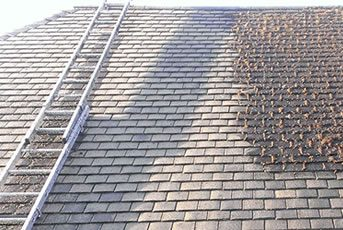 Roof Cleaning Isle Of Bute
